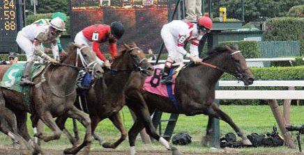 Racing at Saratoga